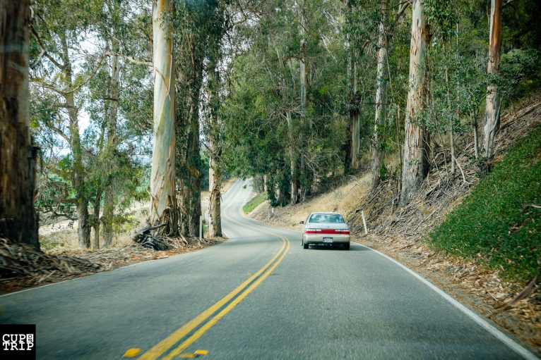 Pacific Coast Highway is just great!