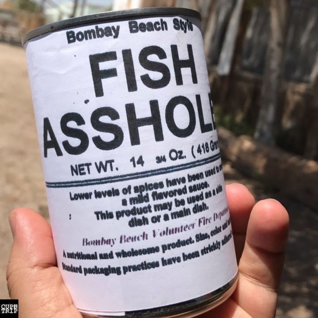 کنسرو Fish Asshole در Bombay Beach